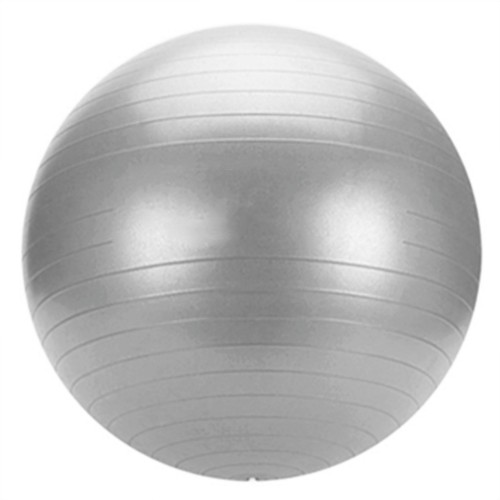ANTI-BURST GYM BALL & PUMP 55cm